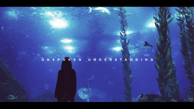 Unspoken Understanding